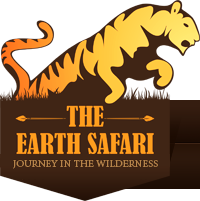 The Earth Safari